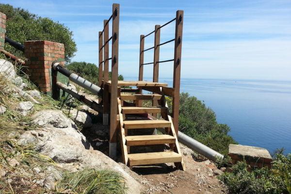 Med Steps Repairs